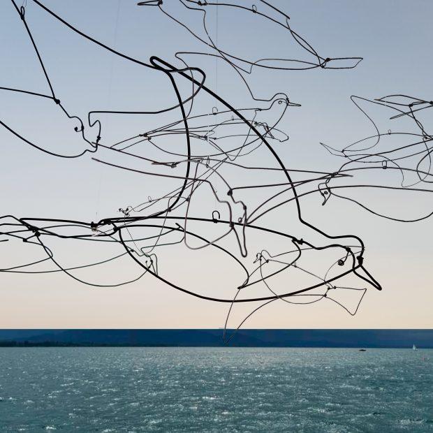 -Vögel über den Bodensee-