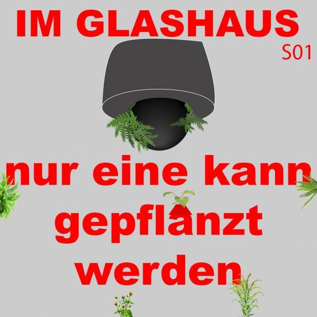 Im Glashaus – nur eine kann gepflanzt werden (Special in Ulm)